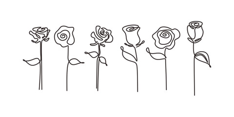 Set of rose flowers continuous line drawing. Contour single one hand drawn minimalism pack collections.