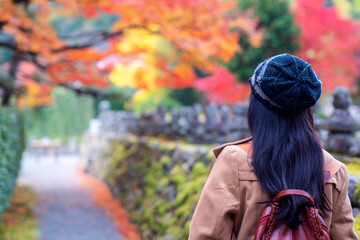 Wall Mural - Traveller girl travel in autumn park in old temple