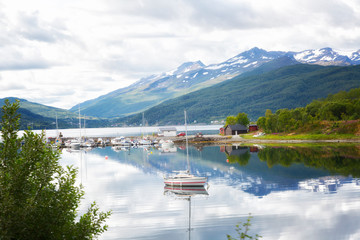 Norway. View of the fjord from the mountain in summer day
