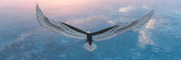 Foto op Plexiglas Eagle Eagle flying flush with water