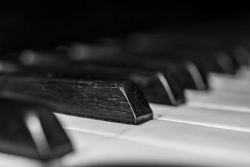 Teclado de piano en primer plano. Foto en blanco y negro