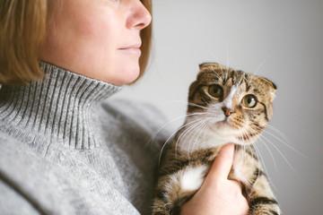 Woman holding beautiful cat on white background
