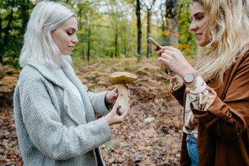 Women sharing a picture of a giant mushroom she found in the forest