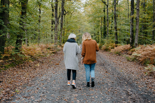 Two women walking in a autumnal forest while checking their smartphone