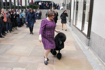 Handler Chrystal Murray runs Siba, a standard poodle that was named best in show at the Westminster Dog Show, to a photo opportunity in New York City