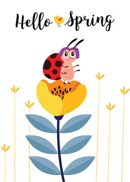 Hello spring. Greeting card with cute cartoon ladybug and flowers. Use for spring season cards, greeting or for social media.