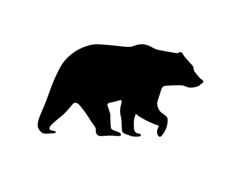 Vector bear icon silhouette isolated on white