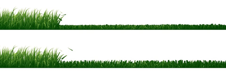Set of mowed grass isolated on white background.