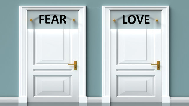 Fear and love as a choice - pictured as words Fear, love on doors to show that Fear and love are opposite options while making decision, 3d illustration