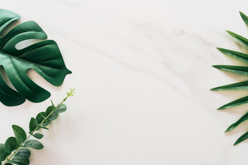 Tropical green leaf on white marble texture abstract background. - fototapety na wymiar