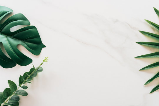 Tropical green leaf on white marble texture abstract background.