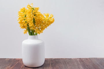 Spring yellow flowers hyacinth in a white vase