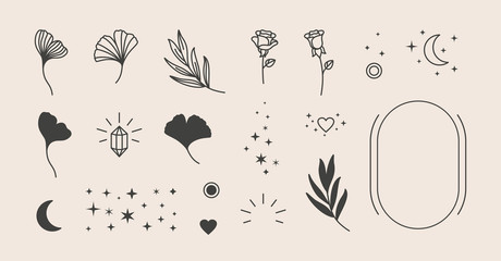 Elements for logo design - rose, Ginkgo Biloba Leaf, Stars, moon, Frame. Vector illustration in a minimal linear style