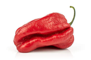 Canvas Prints Hot chili peppers One whole red hot chili pepper isolated on white background