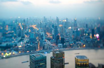 Foto auf Leinwand Shanghai Tilt & shift photo of Shanghai nocturne skyline. Only central park in focus.