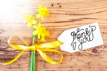 Label With English Calligraphy Thank You. Sunny Yellow Spring Narcissus Flower On Rustic Wooden Background.