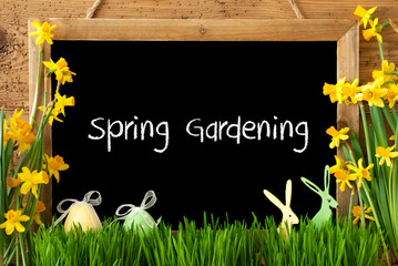 Blackboard With English Text Spring Gardening. Spring Flowers Nacissus Or Daffodil With Grass, Easter Egg And Bunny. Rustic Aged Wooden Background.