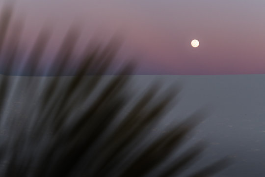 A full moon during sunset at White Sands National Park.