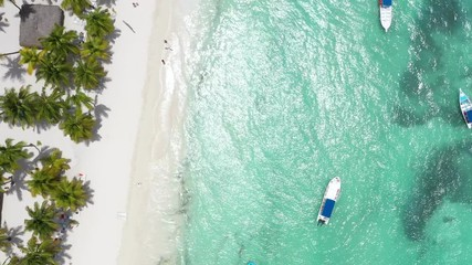 Fototapete - Aerial view from drone on tropical island with coconut palm trees and turquoise caribbean sea. Travel destinations. Summer holidays