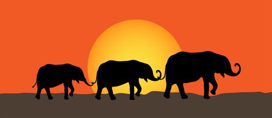 Elefanten Gruppe mit Sonnenuntergang, Vektor illustration isoliert auf weißem Hintergrund