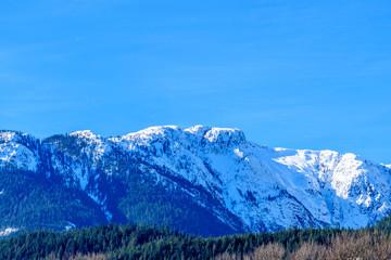 Fotobehang Alpen Rocky Mountains