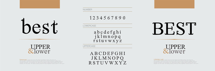 Elegant alphabet letters fonts set. Exclusive letters corporate identity. Typography classic font and numbers. vector illustration