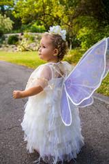 Sweet little Fairy - Fairchild Botanical Garden