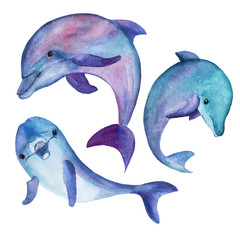 A set of stylized illustrations of dolphins in different angles for individual design of patterns, cards, printed materials. All elements in high resolution, painted with watercolor by hand.