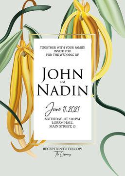 Ylang ylang yellow macro flower botanical greeting card. Wedding invitation flower design. Nature tropical exotic paradise liana flowers , foliage illustration in vector.