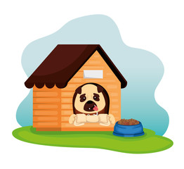little dog with wooden house and dish food vector illustration design