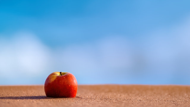Red apple lying on the shores of a sandy beach against a blue and white background of ocean and surf