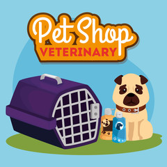 pet shop veterinary with cute dog and icons vector illustration design