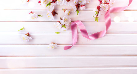 Wall Mural - Easter Spring Blossom on white wooden plank background. Easter Apricot flowers on wood, border art design with pink satin ribbon. Pink blooming tree on wood backdrop closeup.
