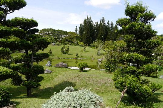 Santo Domingo Botanischer Garten Dominikanische Republik Karibik