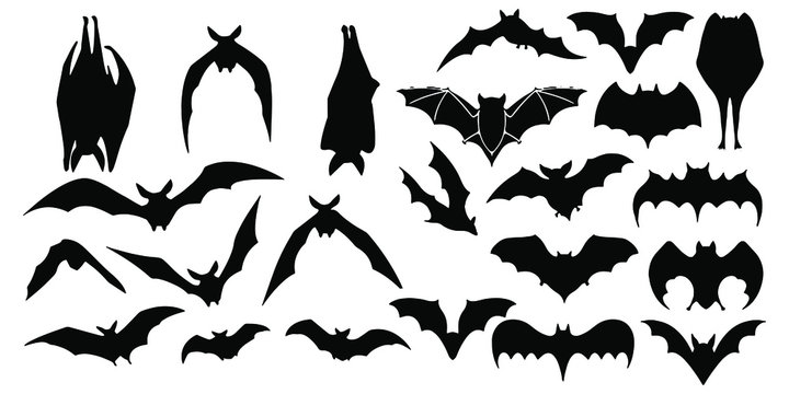 Horror black bats group isolated on white vector