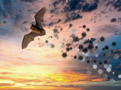 Flying bat with simulated coronavirus