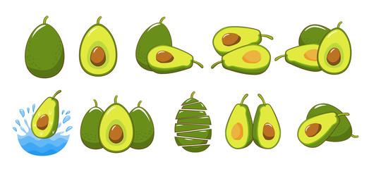 avocado vector set collection graphic clipart design