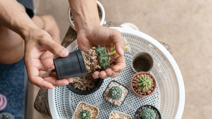 The man holds a pot to plant a cactus.
