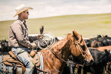 Cowboy riding his horse with lasso during a branding. Cody, Wyoming, USA Fototapete