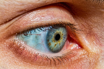 Blue-green eye of woman in close up. Macro photography of eye.