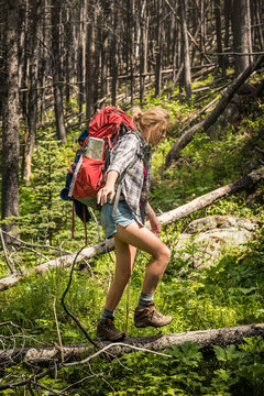 Girl hiking in the mountains. Red Lodge, Montana, USA