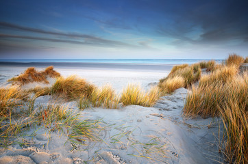 view on North sea beach in the morning