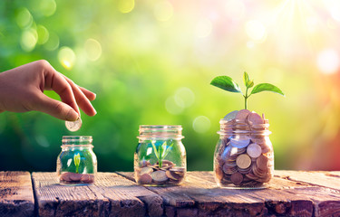 Spoed Fotobehang Planten Save Money And Investment Concept - Plants Growing Up In Jars