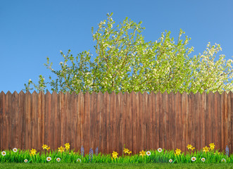 Wall Mural - spring flowers and wooden garden fence