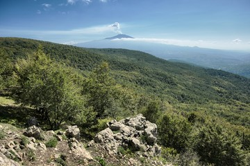 Forest Of Nebrodi Park And Smoke From Volcanic Cone Of The Etna Mount, Sicily
