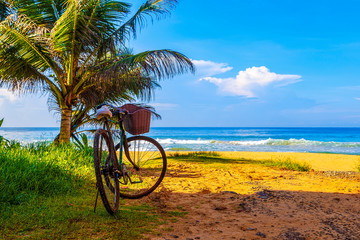 One bicycle is standing on beautiful tropical beach with crystal blue water near palm trees - relaxing pause break in paradise. Sri Lanka