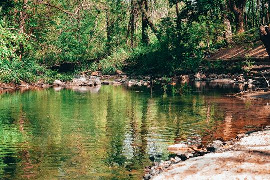 A Landscape Shot of a Small Creek