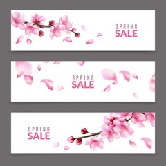 Sakura banners. Spring japanese cherry flower blossom and branches, falling pink sakura petals, springtime april sale floral banner vector set