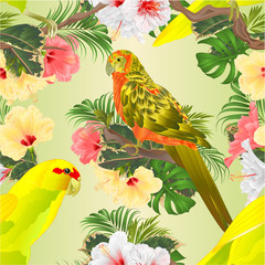 Ingelijste posters Papegaai Seamless texture birds Sun Conure Parrot and Indian Ringneck Parrot in Yellow on branch with tropical flowers hibiscus, palm,philodendron watercolor vintage vector illustration editable Hand draw