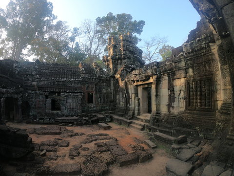 wide angle picture of temple ruins of angkor wat, cambodia with tree ontop